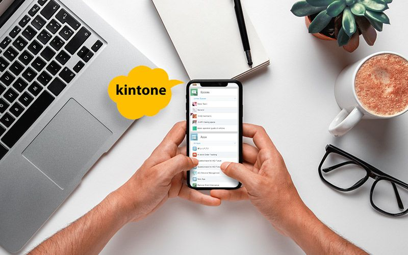 Kintone Mobile App, Business Data Management at the Hands